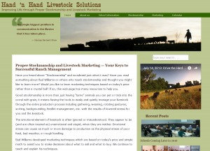 New Hand 'n Hand Website Design