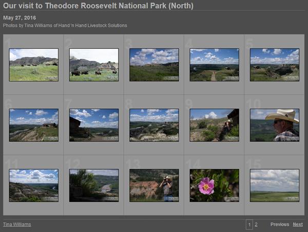 TRNP-N--photos-screenshot